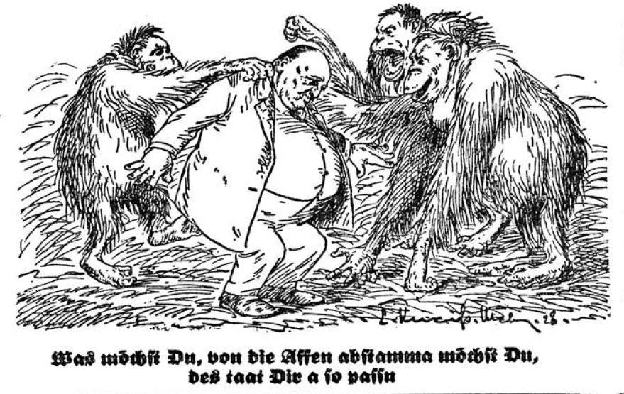 Bild: Von die Affen abstamma möchst Du, des taat Dir so passn