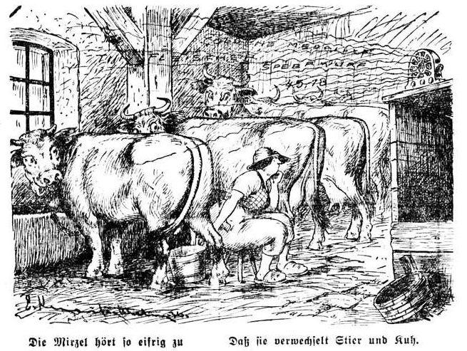 Bild: Die Mirzel hört so eifrig zu Daß sie verwechselt Stier und Kuh.