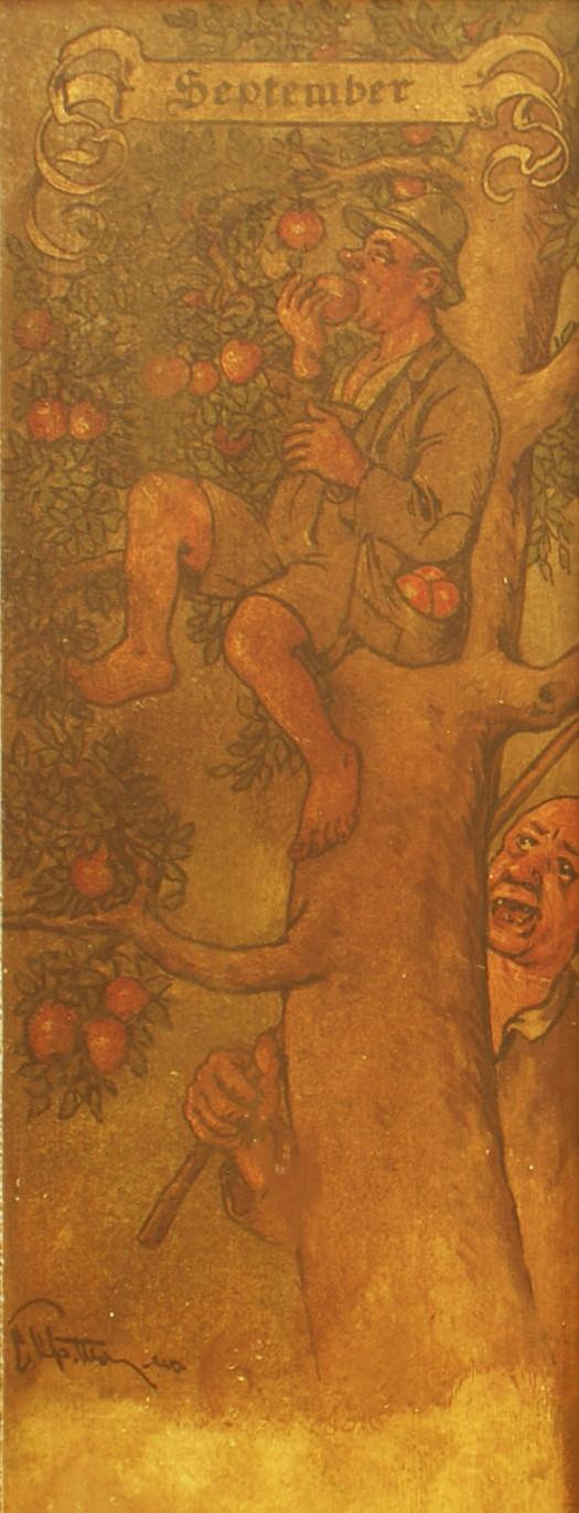 """September: der Eigentümer eines Apfelbaumes ärgert sich über einen unwillkommenen """"Erntehelfer"""""""