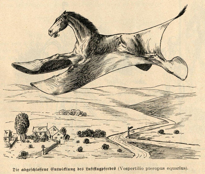 Bild: Die abgeschlossene Entwicklung des Luftflugpferdes