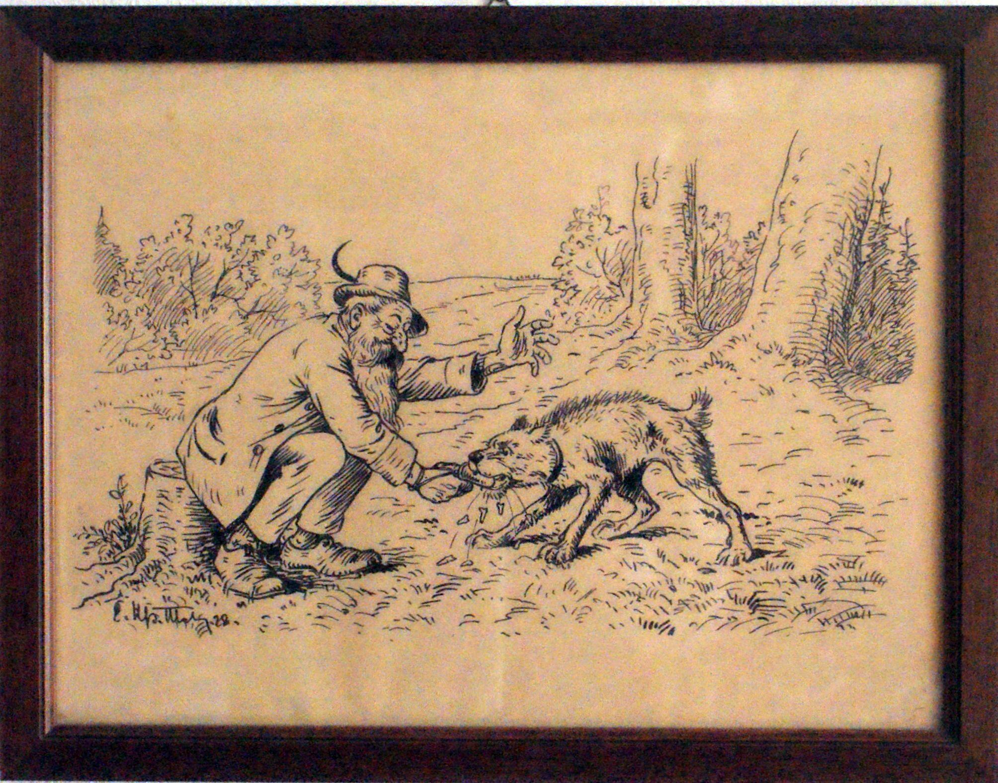 Bild: Ein wilder Hund beisst sich am Fingerling die Zähne aus