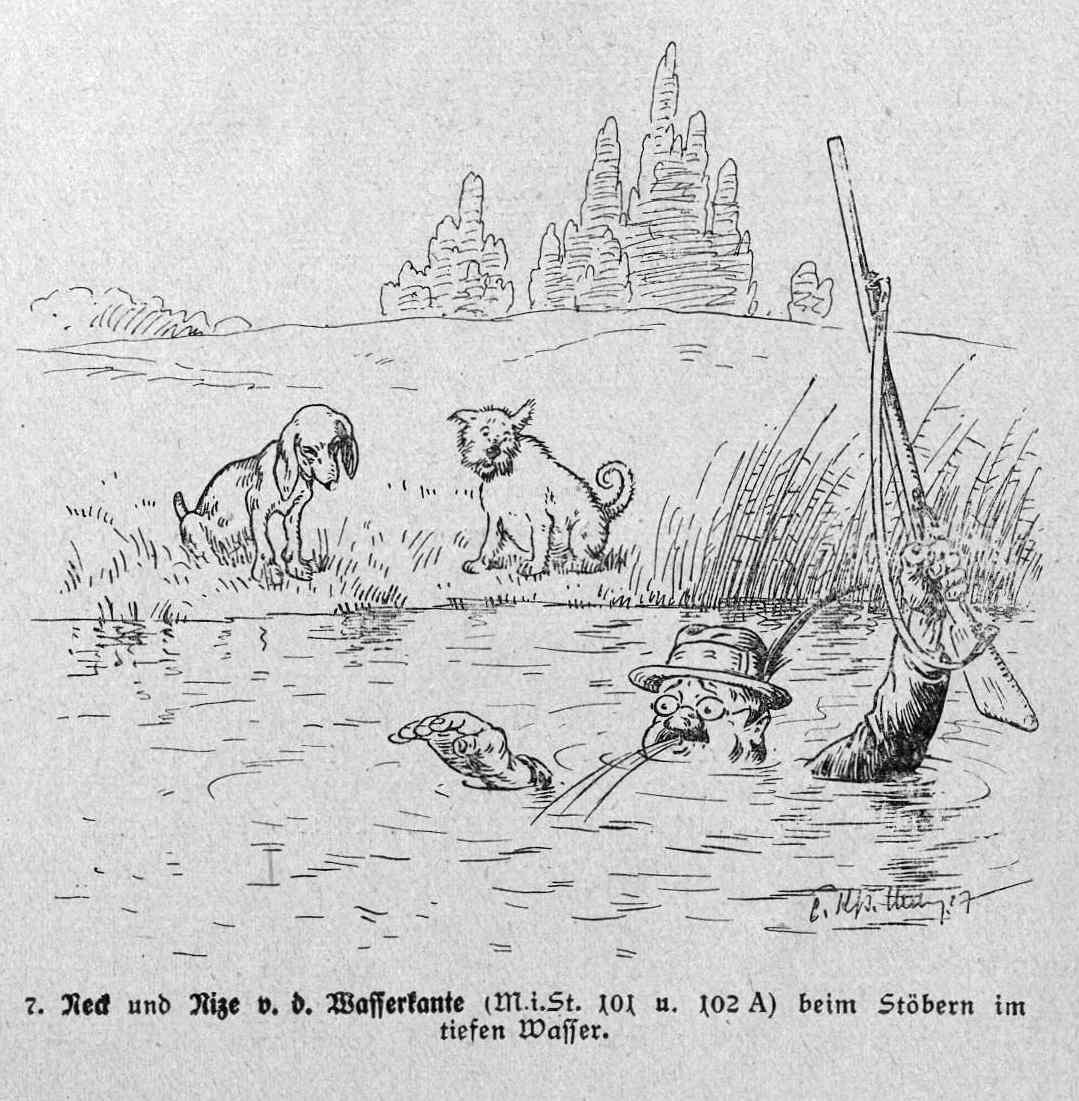 Bild: Neck und Nize von der Wasserkante beim Stöbern im tiefen Wasser