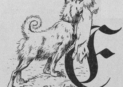 Der M.i.St.-Hund